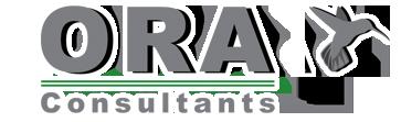 ORA Consultant - Ressources Humaines
